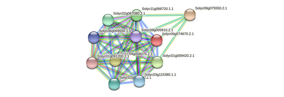 Solyc06g074670.2.1 protein (Solanum lycopersicum) - STRING interaction network