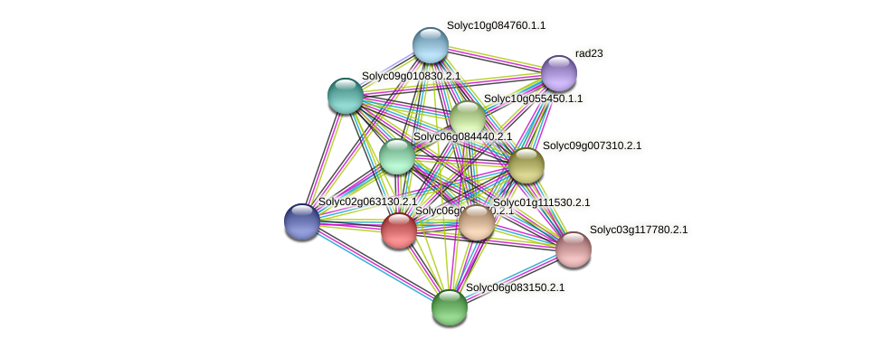 Solyc06g074770.2.1 protein (Solanum lycopersicum) - STRING interaction network