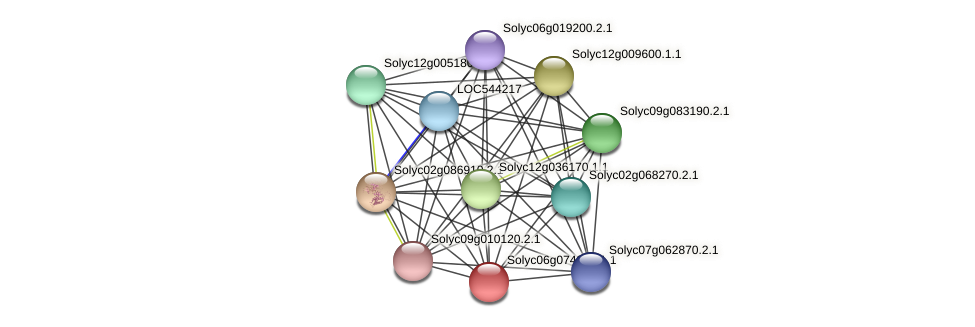 101267613 protein (Solanum lycopersicum) - STRING interaction network