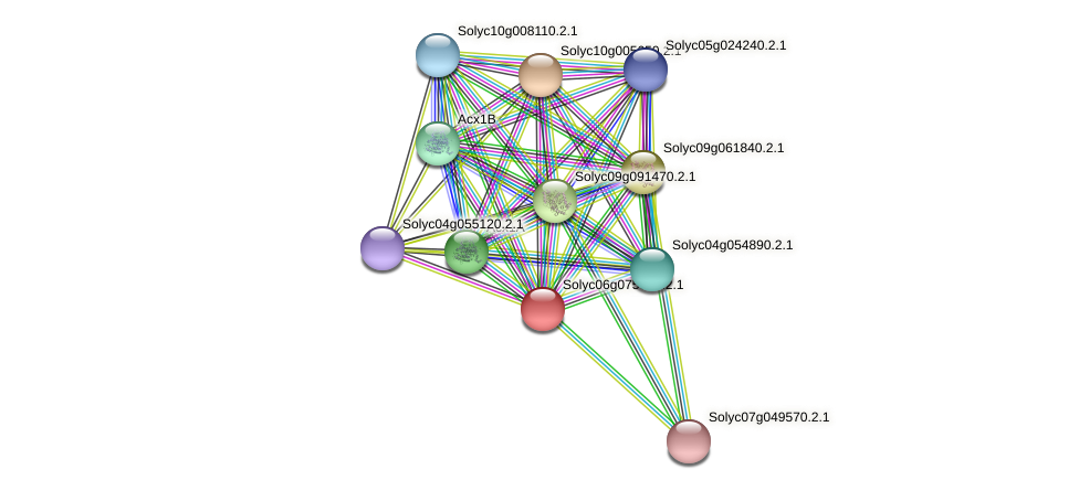 101265549 protein (Solanum lycopersicum) - STRING interaction network