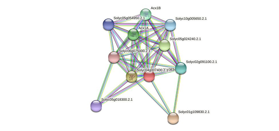 Solyc06g083490.2.1 protein (Solanum lycopersicum) - STRING interaction network
