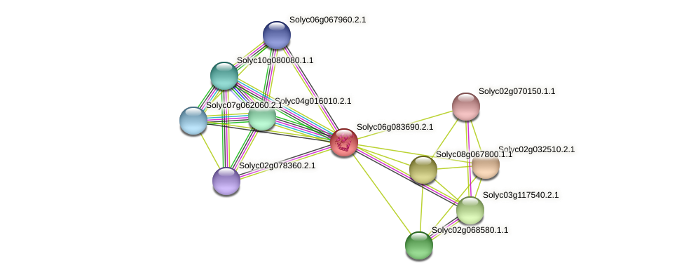 Solyc06g083690.2.1 protein (Solanum lycopersicum) - STRING interaction network