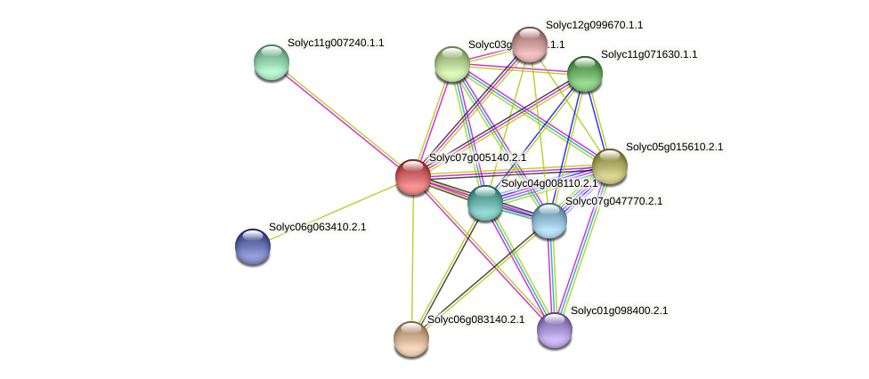Solyc07g005140.2.1 protein (Solanum lycopersicum) - STRING interaction network