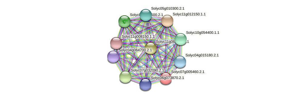 Solyc07g005460.2.1 protein (Solanum lycopersicum) - STRING interaction network
