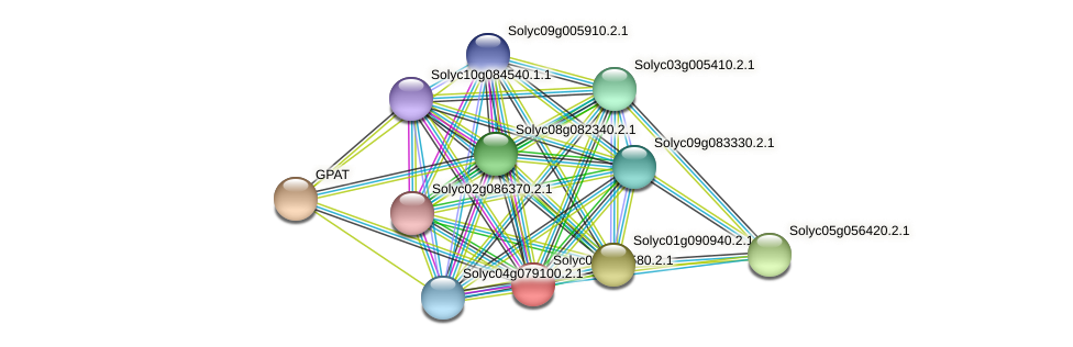 101267419 protein (Solanum lycopersicum) - STRING interaction network
