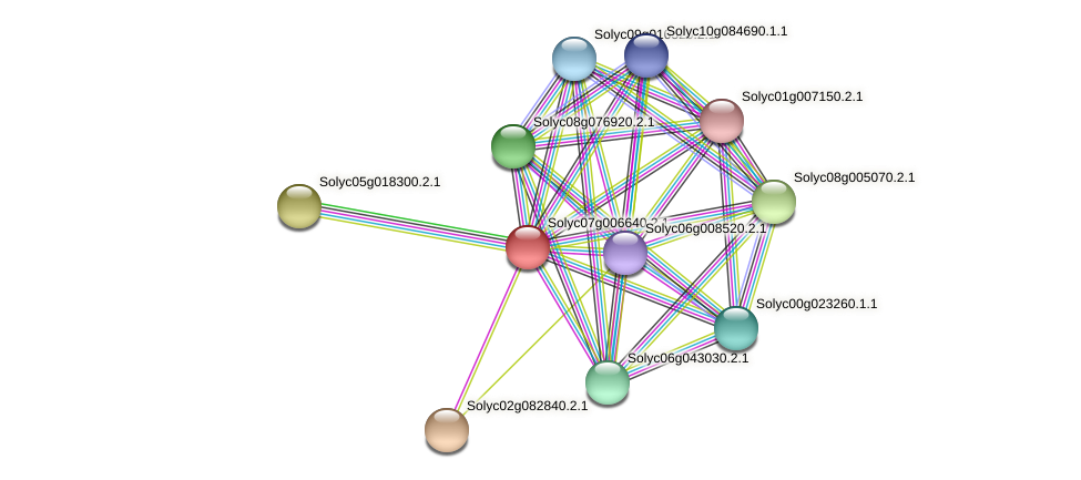 Solyc07g006640.2.1 protein (Solanum lycopersicum) - STRING interaction network