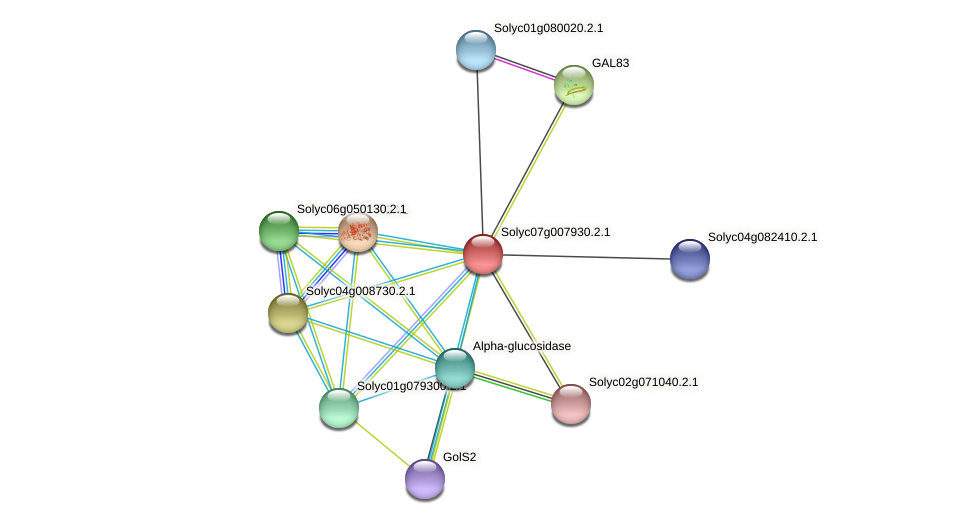 Solyc07g007930.2.1 protein (Solanum lycopersicum) - STRING interaction network