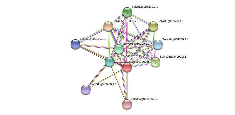 Solyc07g008500.1.1 protein (Solanum lycopersicum) - STRING interaction network