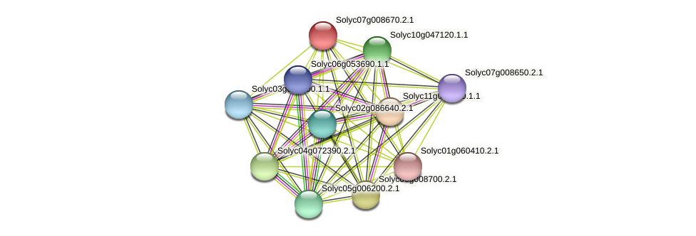 Solyc07g008670.2.1 protein (Solanum lycopersicum) - STRING interaction network