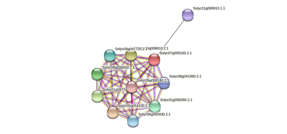 101268196 protein (Solanum lycopersicum) - STRING interaction network