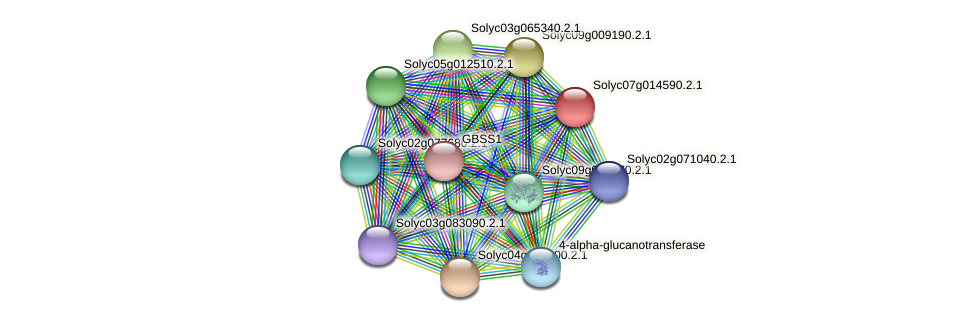 Solyc07g014590.2.1 protein (Solanum lycopersicum) - STRING interaction network