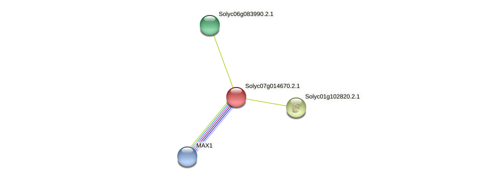 Solyc07g014670.2.1 protein (Solanum lycopersicum) - STRING interaction network