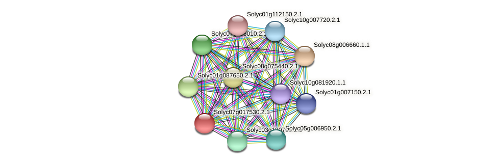 Solyc07g017530.2.1 protein (Solanum lycopersicum) - STRING interaction network