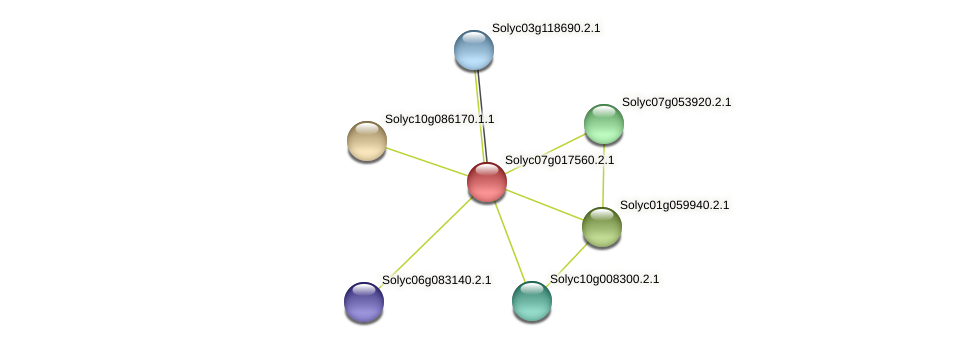 Solyc07g017560.2.1 protein (Solanum lycopersicum) - STRING interaction network