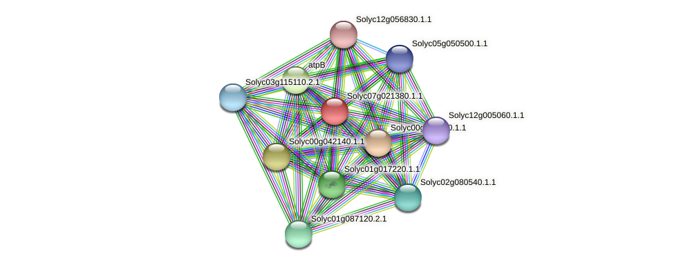 Solyc07g021380.1.1 protein (Solanum lycopersicum) - STRING interaction network