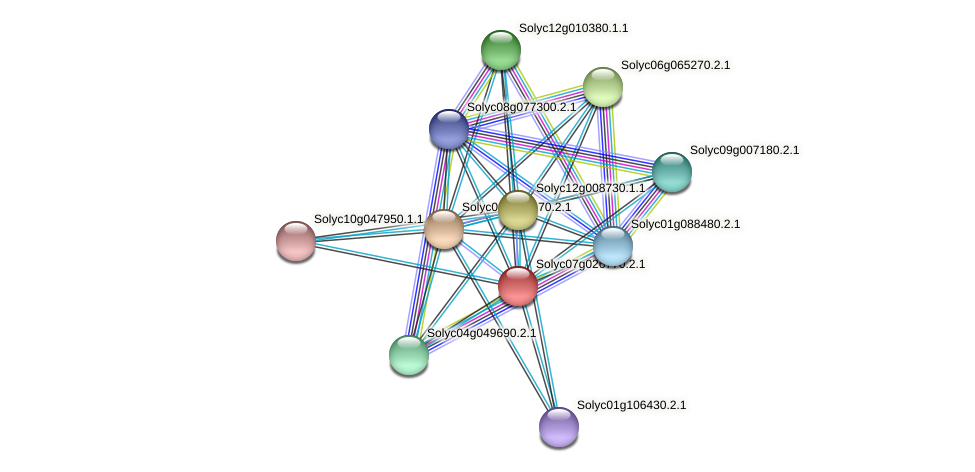 Solyc07g026770.2.1 protein (Solanum lycopersicum) - STRING interaction network