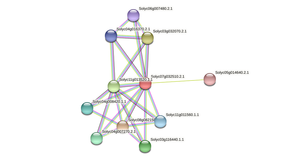 Solyc07g032510.2.1 protein (Solanum lycopersicum) - STRING interaction network