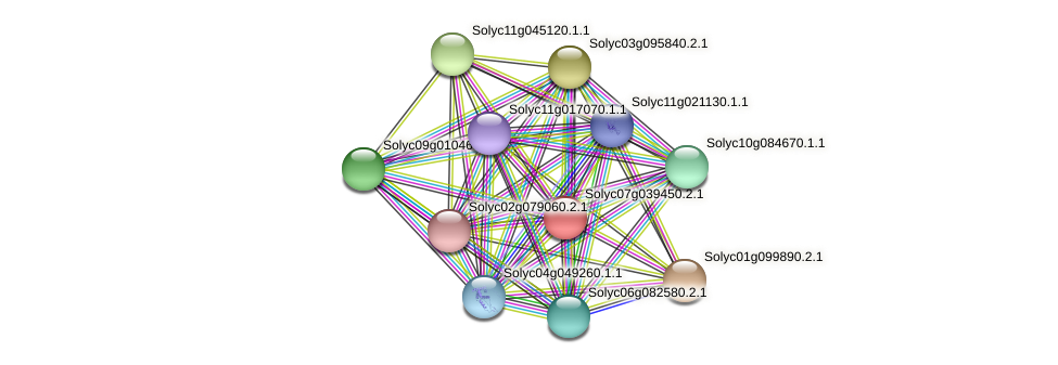 Solyc07g039450.2.1 protein (Solanum lycopersicum) - STRING interaction network