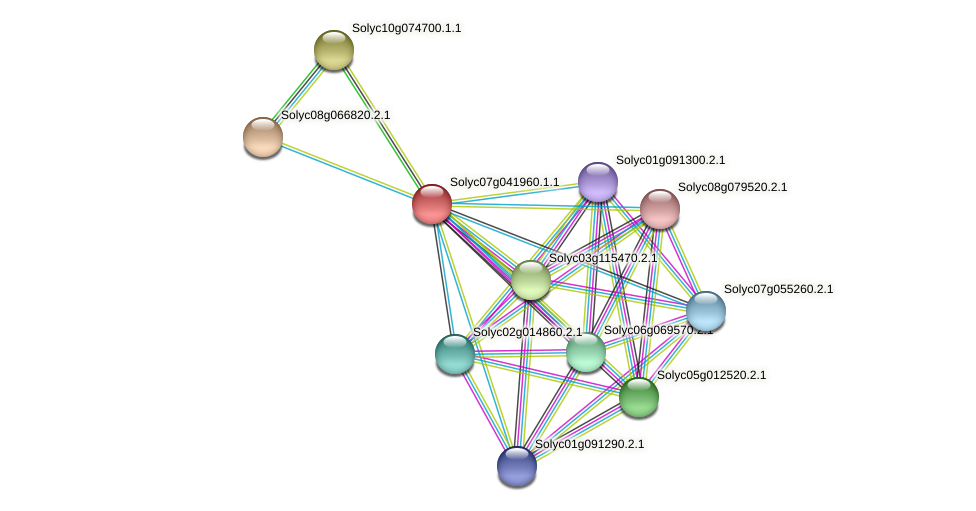 Solyc07g041960.1.1 protein (Solanum lycopersicum) - STRING interaction network