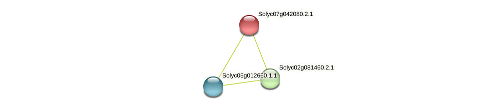 Solyc07g042080.2.1 protein (Solanum lycopersicum) - STRING interaction network