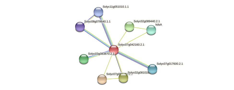 Solyc07g042160.2.1 protein (Solanum lycopersicum) - STRING interaction network