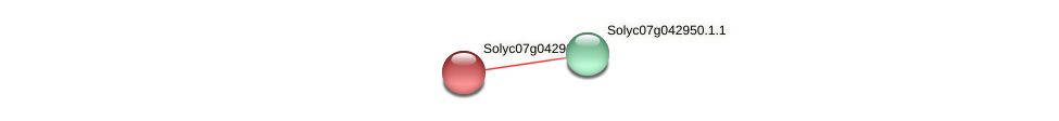 Solyc07g042960.1.1 protein (Solanum lycopersicum) - STRING interaction network