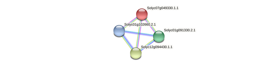 Solyc07g049330.1.1 protein (Solanum lycopersicum) - STRING interaction network