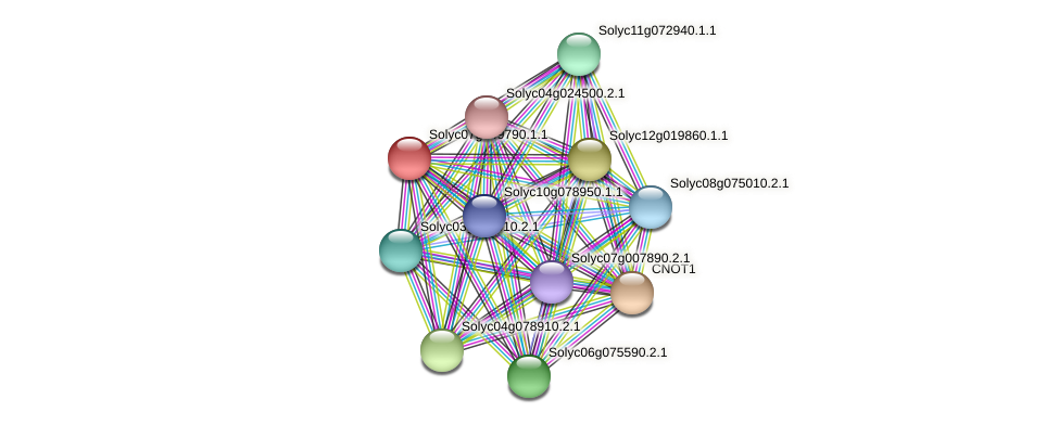 Solyc07g049790.1.1 protein (Solanum lycopersicum) - STRING interaction network