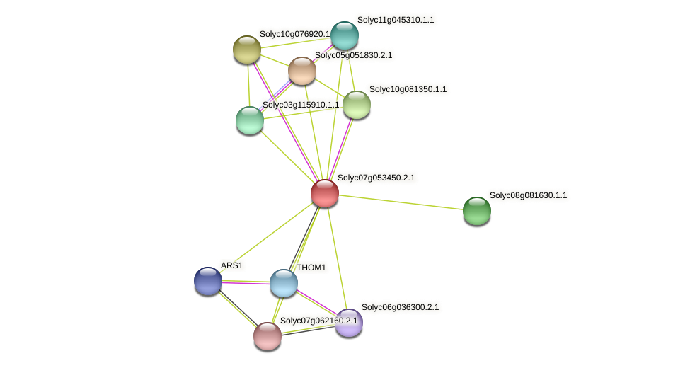 Solyc07g053450.2.1 protein (Solanum lycopersicum) - STRING interaction network