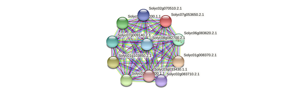 Solyc07g053650.2.1 protein (Solanum lycopersicum) - STRING interaction network