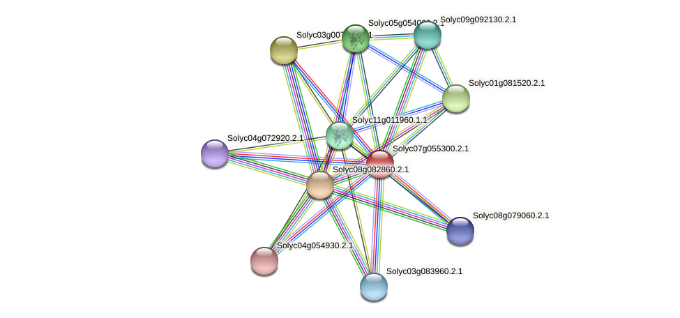 Solyc07g055300.2.1 protein (Solanum lycopersicum) - STRING interaction network