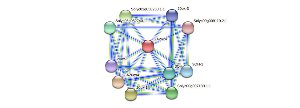 GA2ox4 protein (Solanum lycopersicum) - STRING interaction network
