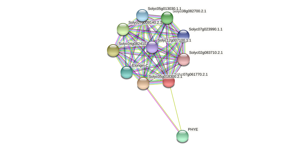 Solyc07g061770.2.1 protein (Solanum lycopersicum) - STRING interaction network