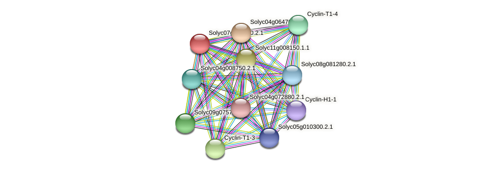 Solyc07g063130.2.1 protein (Solanum lycopersicum) - STRING interaction network