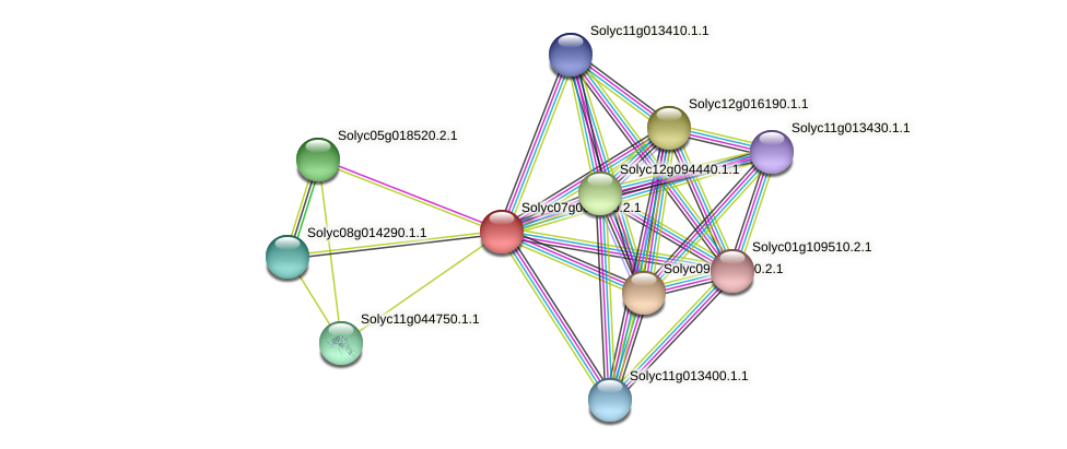 Solyc07g064920.2.1 protein (Solanum lycopersicum) - STRING interaction network