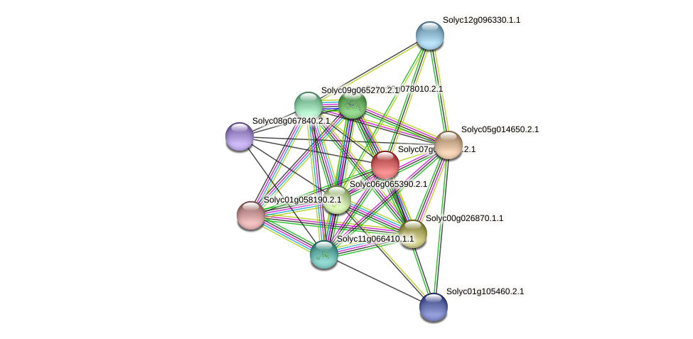 Solyc07g066460.2.1 protein (Solanum lycopersicum) - STRING interaction network