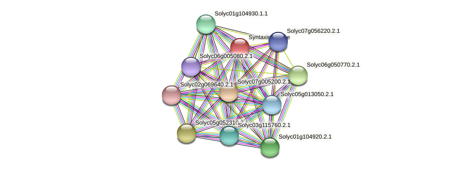 Solyc08g005200.2.1 protein (Solanum lycopersicum) - STRING interaction network