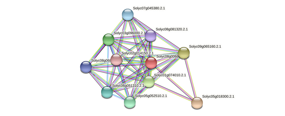 Solyc08g006600.2.1 protein (Solanum lycopersicum) - STRING interaction network