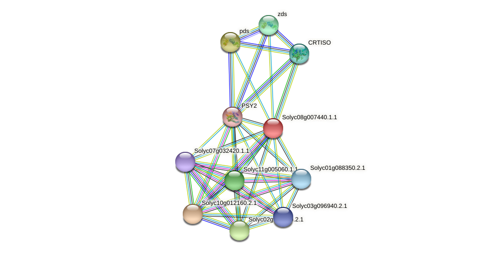 Solyc08g007440.1.1 protein (Solanum lycopersicum) - STRING interaction network