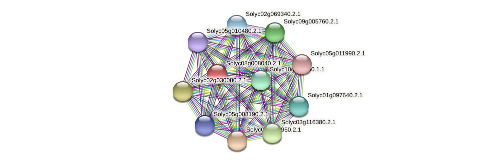 Solyc08g008040.2.1 protein (Solanum lycopersicum) - STRING interaction network