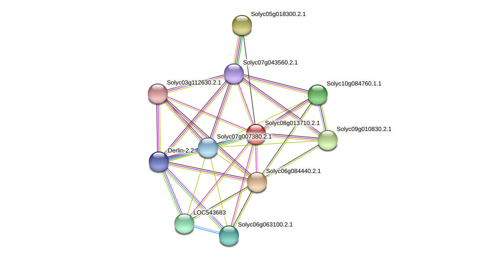 101243912 protein (Solanum lycopersicum) - STRING interaction network