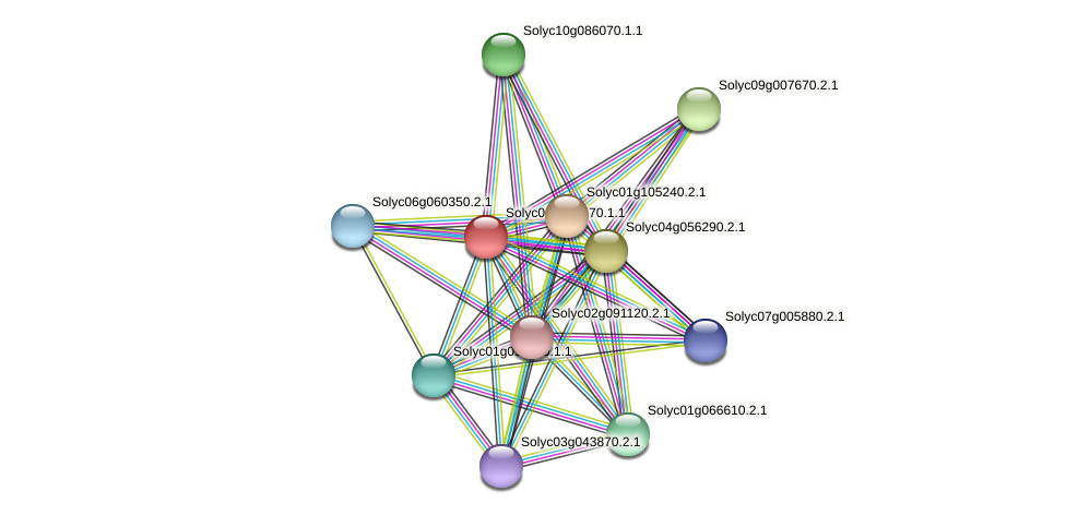 Solyc08g023570.1.1 protein (Solanum lycopersicum) - STRING interaction network