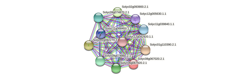 Solyc08g067020.2.1 protein (Solanum lycopersicum) - STRING interaction network