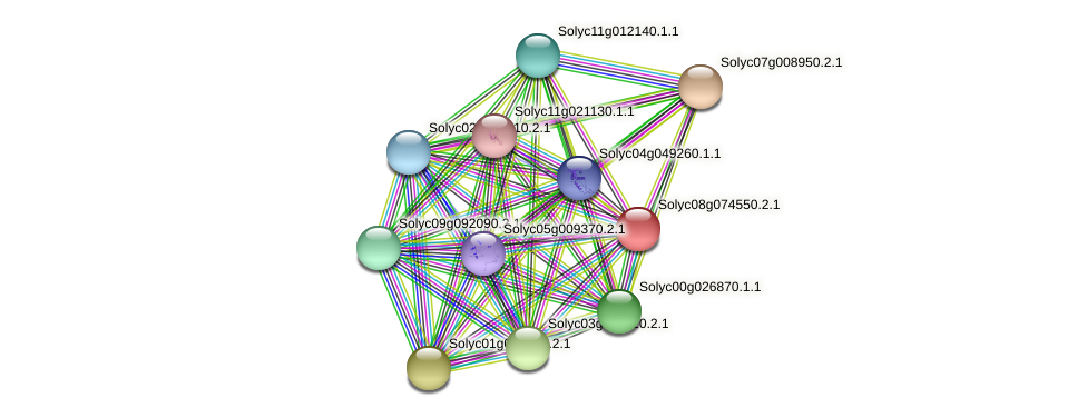 Solyc08g074550.2.1 protein (Solanum lycopersicum) - STRING interaction network