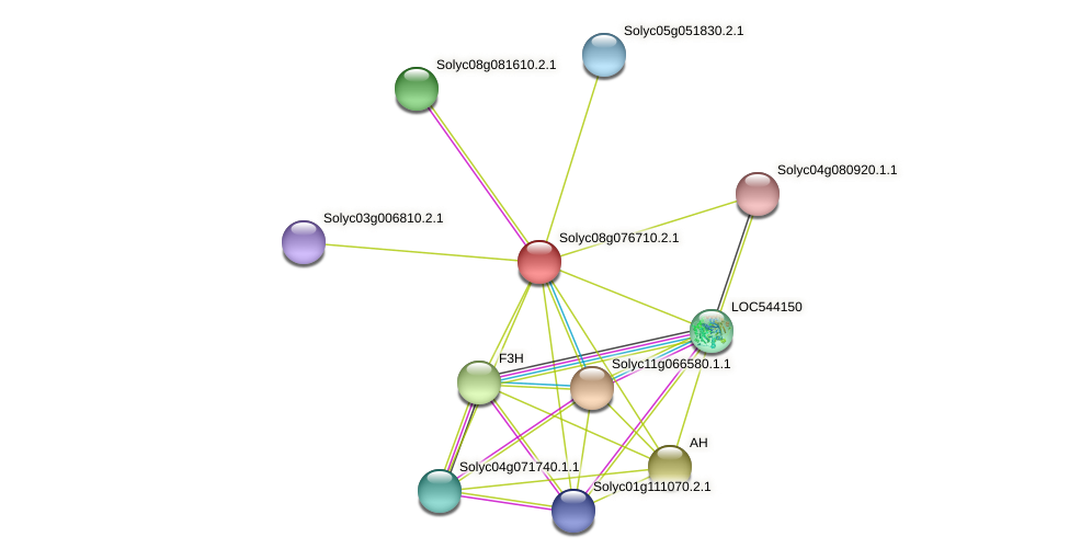 Solyc08g076710.2.1 protein (Solanum lycopersicum) - STRING interaction network