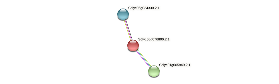 Solyc08g076800.2.1 protein (Solanum lycopersicum) - STRING interaction network