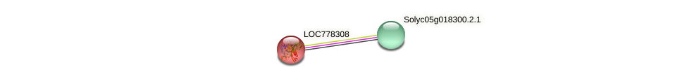 Solyc08g079900.1.1 protein (Solanum lycopersicum) - STRING interaction network