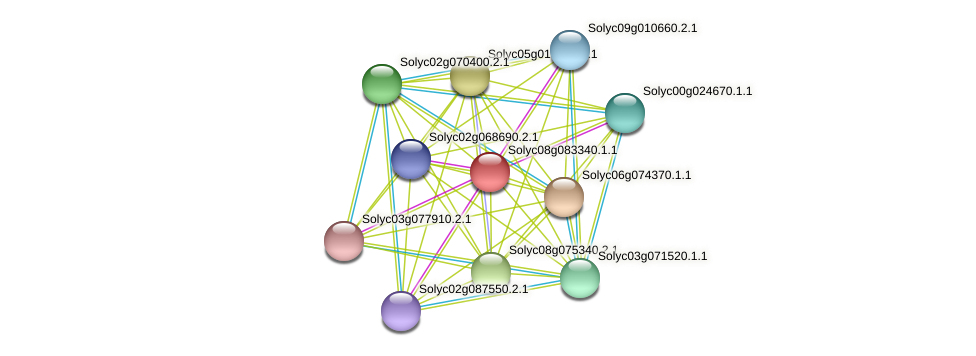 Solyc08g083340.1.1 protein (Solanum lycopersicum) - STRING interaction network