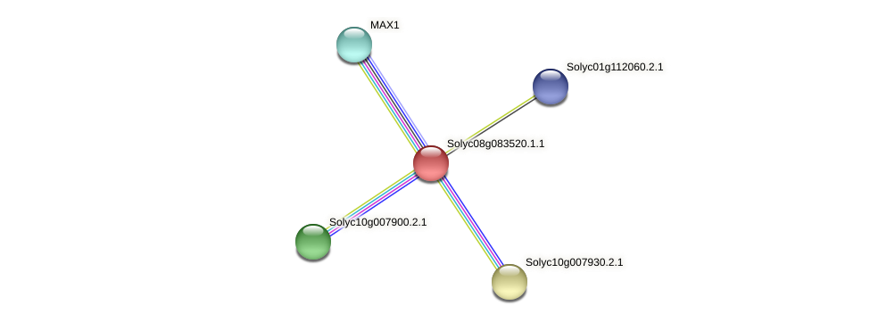 101247452 protein (Solanum lycopersicum) - STRING interaction network