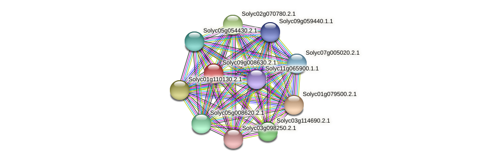 Solyc09g008630.2.1 protein (Solanum lycopersicum) - STRING interaction network